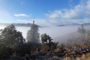 Poronui Hill in Fog